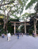TOKYO - 23 NOVEMBRE: Il portone di Torii a Meiji Jingu Fotografia Stock Libera da Diritti