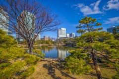 Tokyo-Oase stockbild