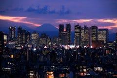 Tokyo på solnedgången fotografering för bildbyråer