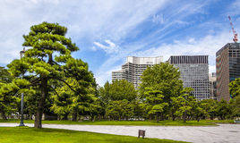 Tokyo Palace Garden. An oasis traditional japanese garden at the center of Tokyo Royalty Free Stock Image