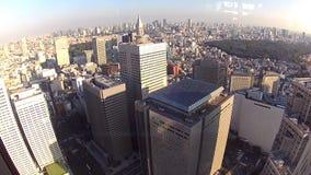 Tokyo Panorama Royalty Free Stock Image