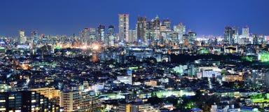 Tokyo Panorama Royalty Free Stock Images