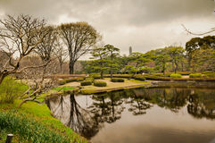 Tokyo park. Lake view in Tokyo park Royalty Free Stock Photography