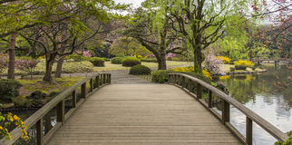 Tokyo Park Stock Images