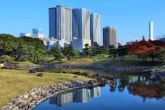 Tokyo park Royalty Free Stock Images