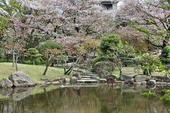Tokyo parkerar Arkivbilder