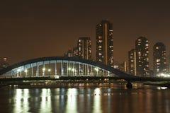 Tokyo river Royalty Free Stock Photos