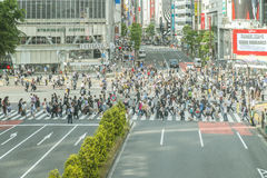Tokyo, Shibuya 20. Mai 2015 Der shibuya Bezirk in Tokyo Shibuya ist populärer Bezirk in Tokyo, für sein Fußgängerkreuz Stockfoto
