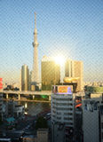 Tokyo Sky tree building at sunset through wired glass. Blurred b Royalty Free Stock Photo