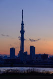 Tokyo Sky Tree at dusk Royalty Free Stock Images
