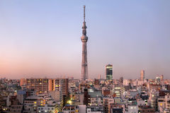 Tokyo Sky Tree, Japan. Tokyo skyline at sunset with Tokyo Sky Tree (634m), the highest free-standing structure in Japan and 2nd in the world. The communication stock images