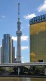 Tokyo Sky tree. And office building skyline, Tokyo, japan. Tallest radio tower in Japan Stock Image
