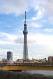 Tokyo Sky Tree. The Sky Tree was shot in a cloudy day Royalty Free Stock Image