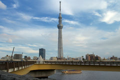 Tokyo Sky Tree. The Sky Tree was shot in a cloudy day Royalty Free Stock Photography