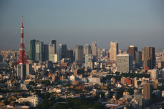 Tokyo skyline. Tokyo Tower and Maronouchi business district Royalty Free Stock Photo
