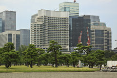 Tokyo skyline from Imperial palace Stock Photography