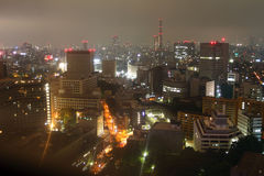 Tokyo skyline at night Royalty Free Stock Photo