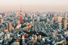 Tokyo Skyline from Roppongi Royalty Free Stock Photography