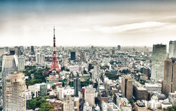 Tokyo skyscrapers and Tokyo Tower aerial view Stock Image