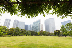 Tokyo skyscrapers views from a park Royalty Free Stock Photography