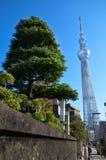 Tokyo Skytree avec la nature au Japon image libre de droits