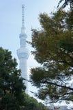 Tokyo Skytree gränsmärke av Tokyo Royaltyfria Foton