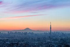 Tokyo Skytree and Mount Fuji Stock Image