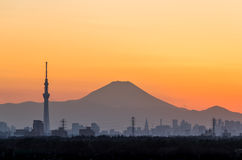 Tokyo Skytree and Mount Fuji Royalty Free Stock Image