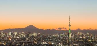 Tokyo skytree and mountain fuji Royalty Free Stock Photo