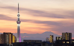 Tokyo skytree with Mt Fuji Royalty Free Stock Photo