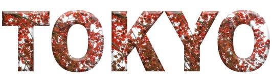 Tokyo som var skriftlig med sakura, täckte bokstäver Royaltyfri Foto