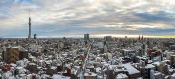 Tokyo-Stadtansicht mit skytree am Morgen Lizenzfreie Stockbilder