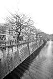 Tokyo-Stadtwasserkanal und -bäume Stockbilder