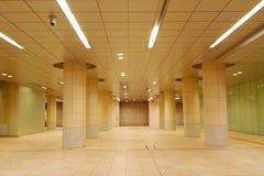 Tokyo subterrâneo imagens de stock royalty free