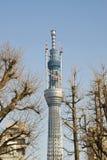 tokyo torn Royaltyfri Fotografi