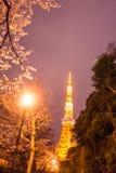 Tokyo torn med sakura förgrund i vårtid på den Tokyo natten Arkivbilder
