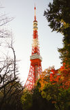 Tokyo tower in Autumn. Tokyo Tower in the Winter with Red, Yellow and Green leaves besides Royalty Free Stock Photography