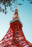 Tokyo Tower with blue sky. Tokyo Tower from the based view with silhouette leaves Royalty Free Stock Image