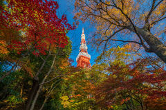 Tokyo Tower blue sky in Japan Royalty Free Stock Images
