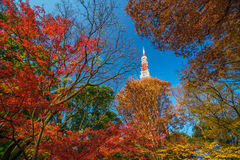 Tokyo Tower with blue sky in Japan Stock Photos