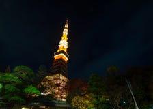 Tokyo Tower at night Royalty Free Stock Image