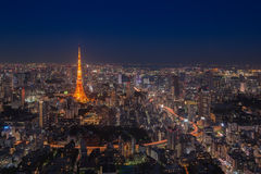 Tokyo tower at night time Royalty Free Stock Photo