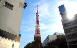 Tokyo tower red and white color . Royalty Free Stock Photography