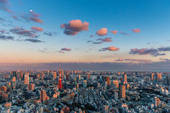 Tokyo Tower. Stands out among the Tokyo cityscape as dusk falls over Japan Stock Photography