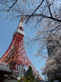 Tokyo Tower Station. Tokyo, Japan, blossom, spring, sky Stock Photo