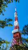 Tokyo tower in summer and a green tree on May 13,2016 in Tokyo,J Stock Photos