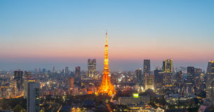 Tokyo Tower and Tokyo city Royalty Free Stock Photos