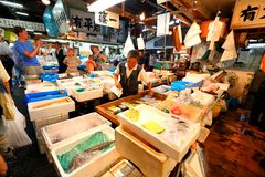Tokyo: Tsukiji Seafood Fish Market Royalty Free Stock Image