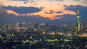 Tokyo in the twilight Royalty Free Stock Photo