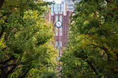 Tokyo University main building clock tower Stock Photography